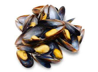 Gourmet Chilean Whole Shell Mussels