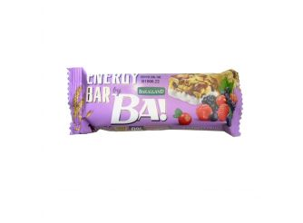 BA! Bar with Dry Fruits