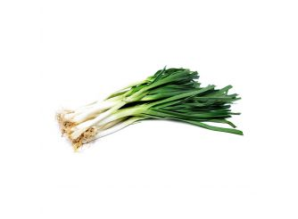 Organic Green Onion, Sara