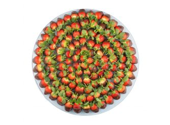 DippedStrawberryRound25-30Lrg