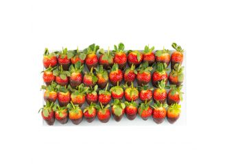 Gourmet Belgian Chocolate Dipped Strawberry Platter - Small