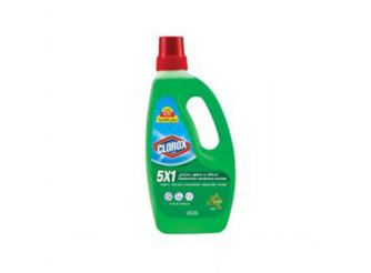 Clorox 5in1 Disinfecting Household Cleaner