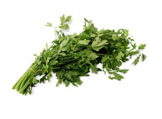 Fresh Food Coriander