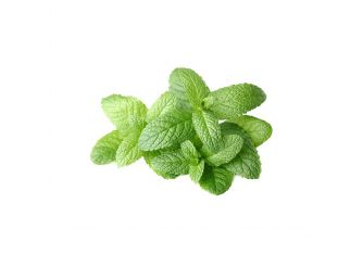 Nabat Fresh Mint