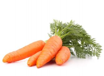 Egyptian Carrot