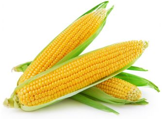 Fresh Food Sweet Corn