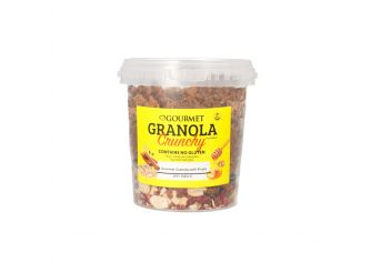 Gourmet Granola with Dried Fruits