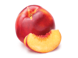 South African Nectarine