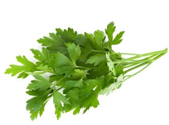 Fresh Food Parsley